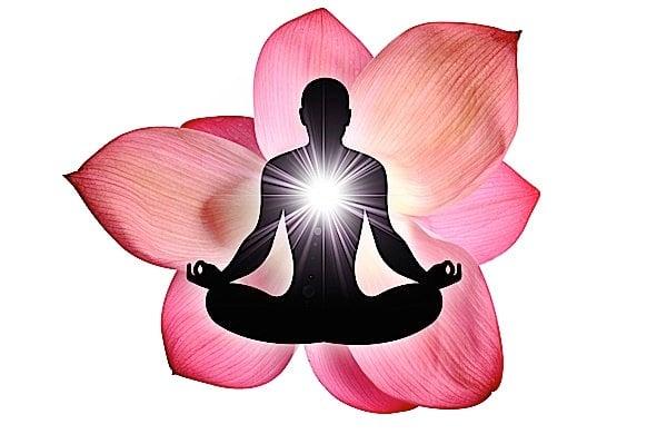 Buddha Weekly Buddha Nature represented by light and the Lotus Buddhism