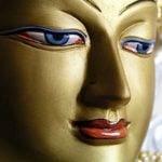 Buddha Weekly face of compassion chenrezig avalokiteshvara guanyin Buddhism