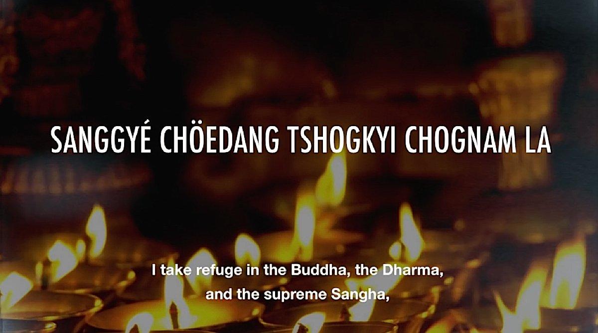 Buddha Weekly Refuge in Budddha Dharma and Sangha Buddhism