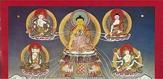 Buddha Weekly Shakaymuni Buddhism