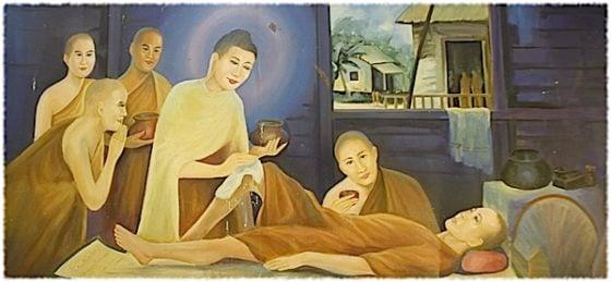 Buddha Weekly Buddha attends to sick Buddhism