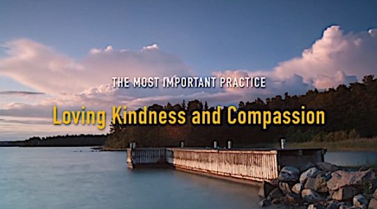 Buddha Weekly Featuring Loving Kindness and Compassion the most important Buddhist practices Buddhism