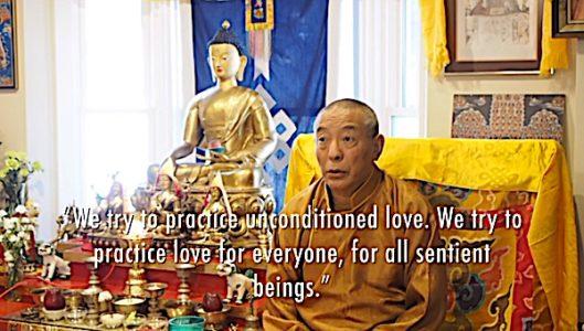 Buddha Weekly Unconditioned love for everyone Zasep Tulku Rinpoche Buddhism