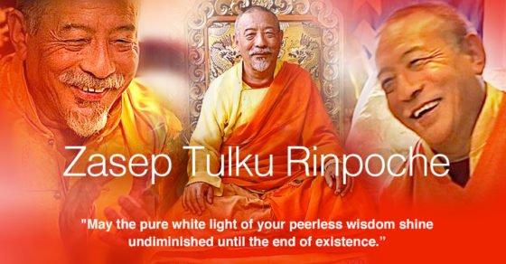 Zasep Tulku Rinpoche 960