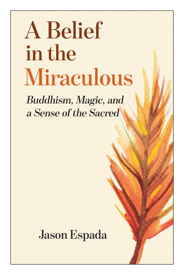 A Belief in the Miraculous V