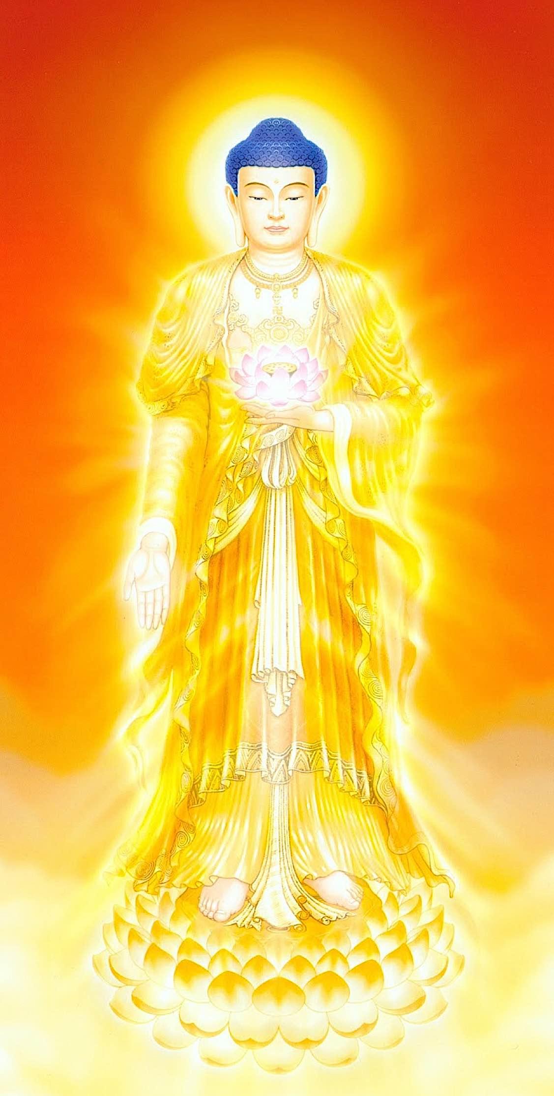 Buddha Weekly Amitabha Buddha in the Chinese style Buddhism