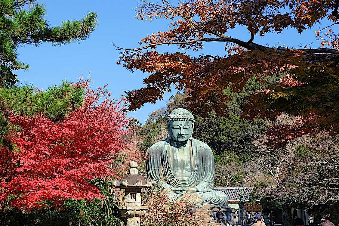 Buddha Weekly Amitabha Buddha statue in temple garden Autumn Buddhism