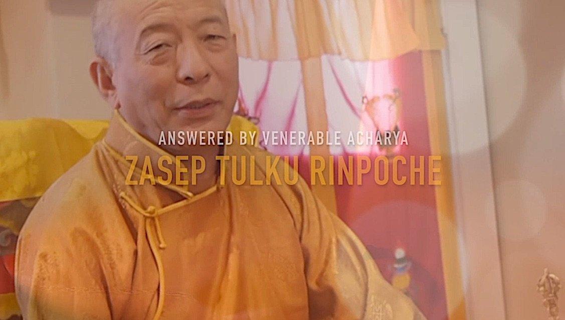 Buddha Weekly Answered by Venerable Zasep Tulku Rinpoche Buddhism