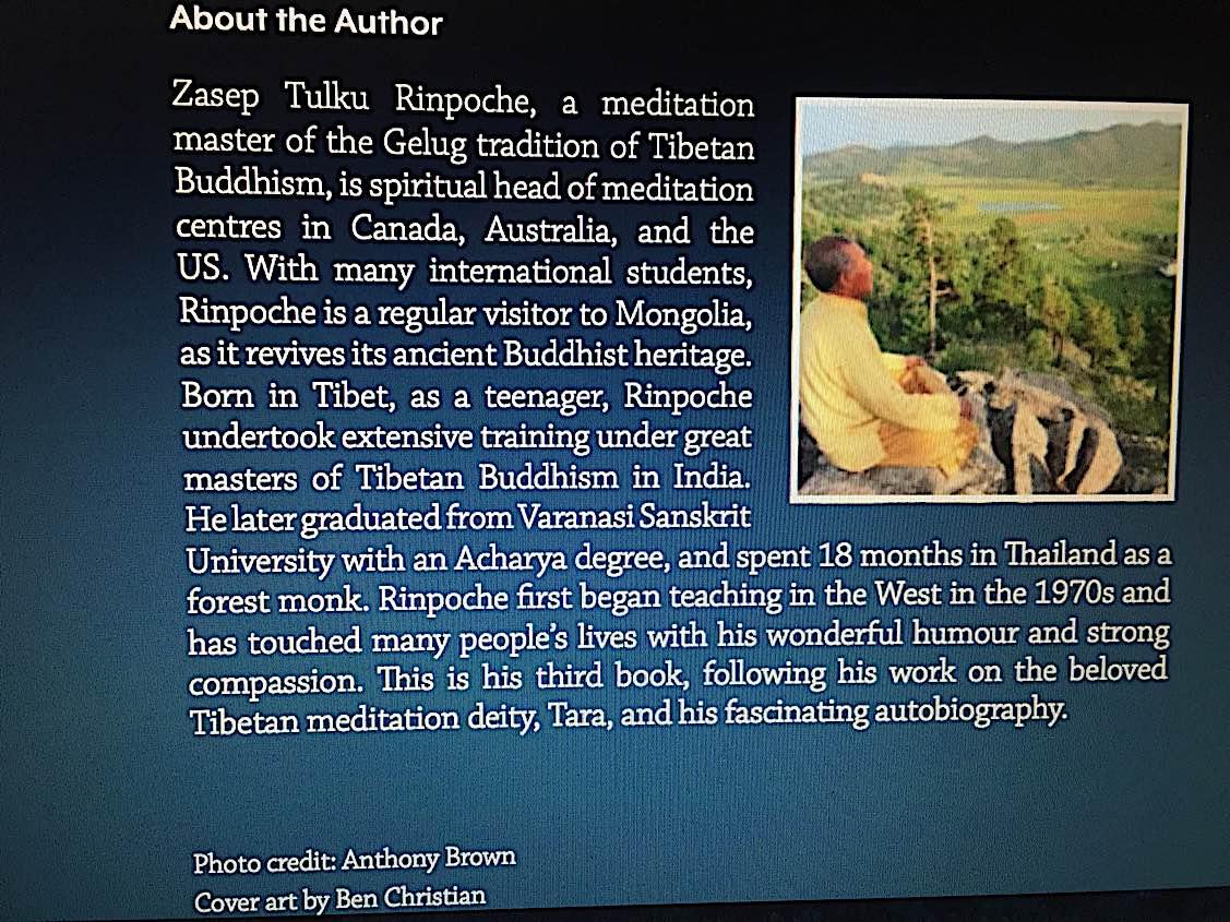 Buddha Weekly Back cover of Gelug Mahamudra a book by Zasep Rinpoche Buddhism