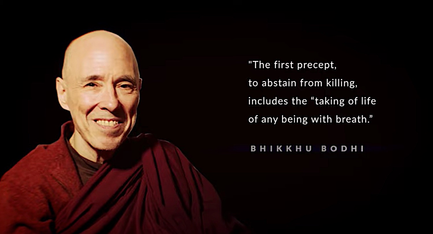 Buddha Weekly Bhikkhu Bodhi The first precept do not kill any being with breath Buddhism