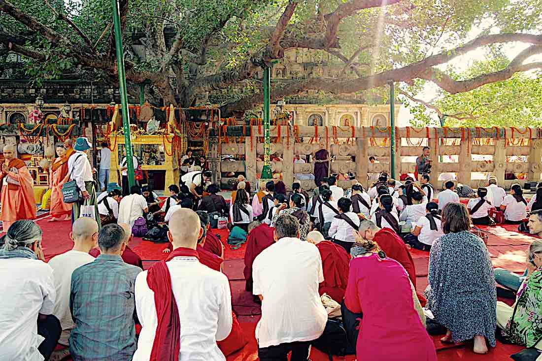 Buddha Weekly Bodhgaya Buddhism