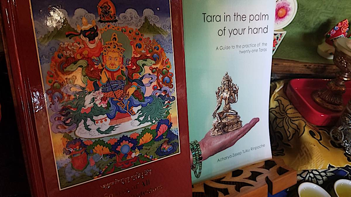 Buddha Weekly Book Source of All Protectors and Tara in the Palm of Your Hand Zasep Tulku RInpoche Buddhism