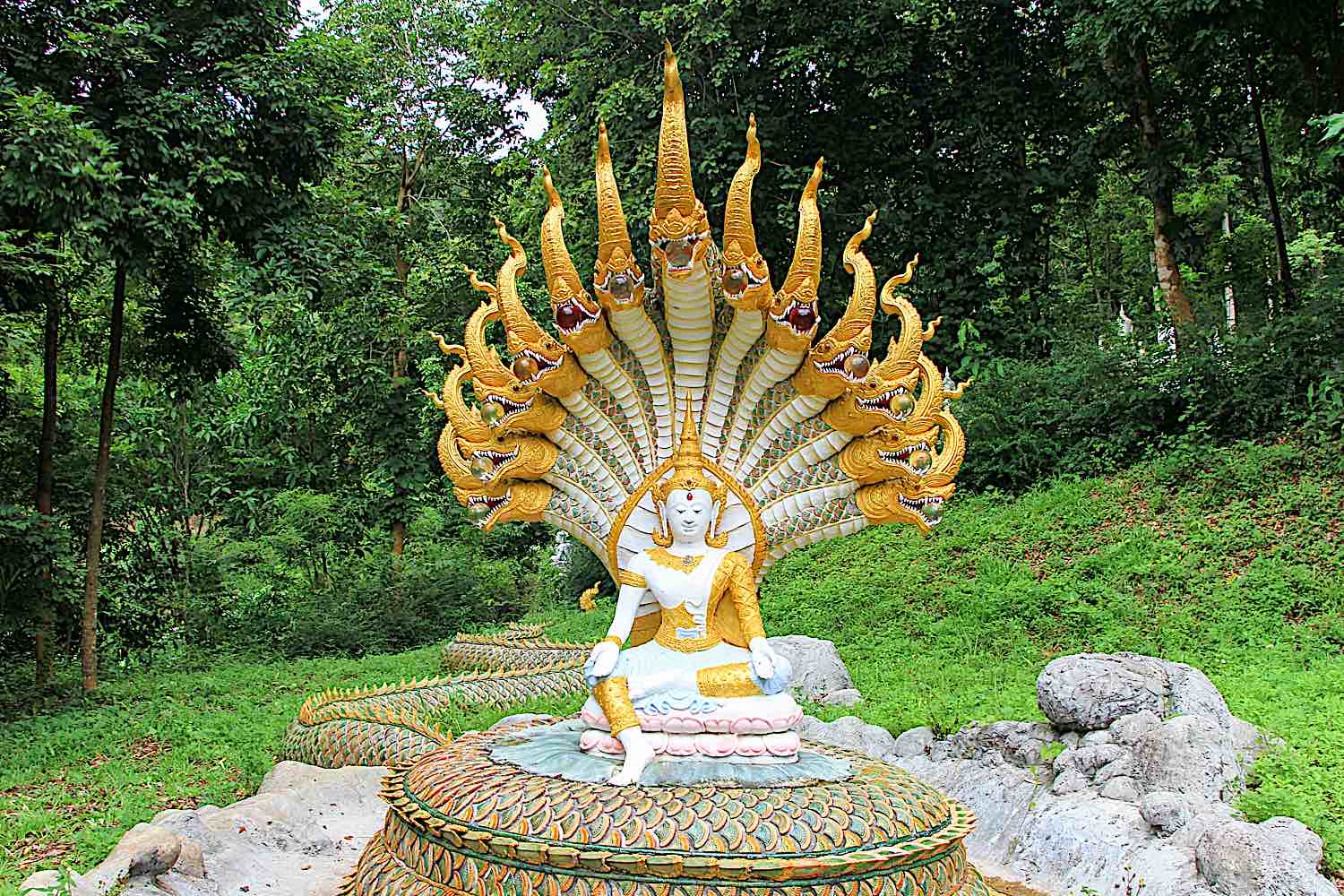 Famously, the Great Naga Mucalinda protected the Buddha for six days as he meditated under the Bodhi Tree. This is commemorated in countless statues of Buddha with a multi-headed Naga shielding him from the rain.