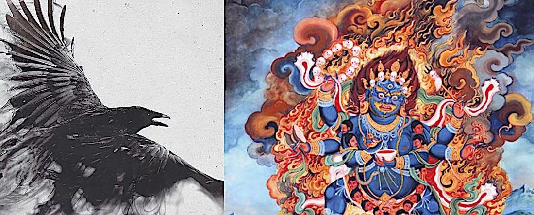 Buddha Weekly Crow and Mahakala feature image Buddhism