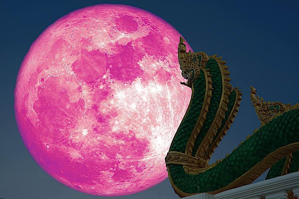 Buddha Weekly Full moon and Naga on a Buddhist Temple Buddhism