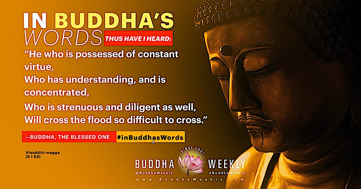 """""""He who is possessed of constant virtue,Who has understanding, and is concentrated,  Who is strenuous and diligent as well,Will cross the flood so difficult to cross.""""  Buddha, The Blessed One from Visuddhi-maga (S I 53)."""