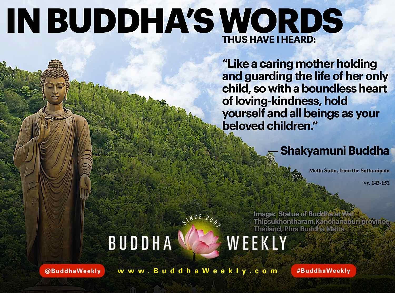 Buddha Weekly In Buddhas Words Metta Sutta instagram