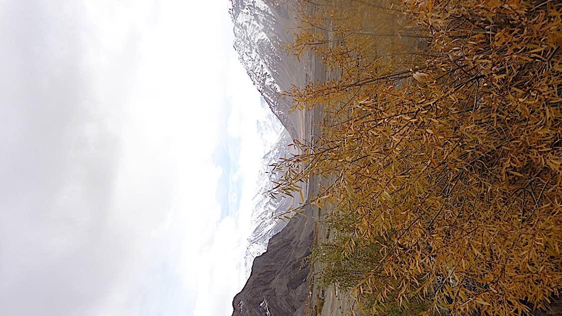 Buddha Weekly Ladakh Valley Buddhism