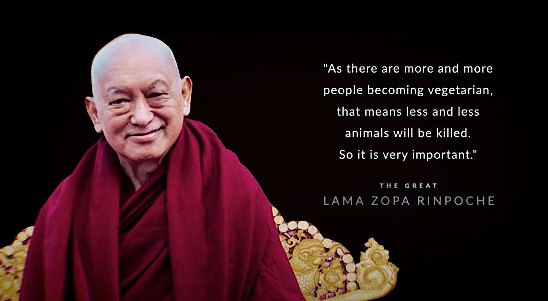 Buddha Weekly Lama Zopa Rinpoche Vegetarian is very important Buddhism