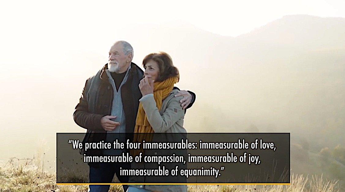 Buddha Weekly Medicine Buddah Four Immeasurables of love compassion joy equanimity Buddhism