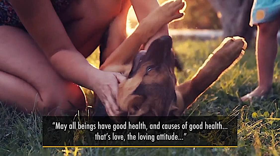 Buddha Weekly Medicine Buddha May all beings have good health love immeasurable Buddhism