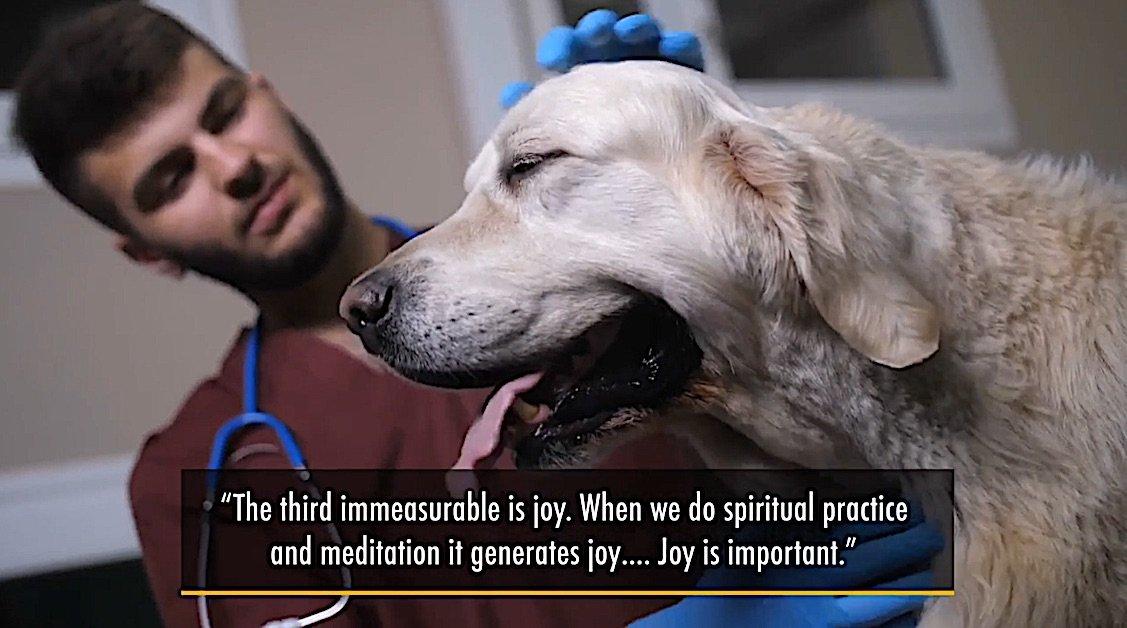 Buddha Weekly Medicine Buddha Third Immeasurable Joy spiritual practice generates Joy Buddhism