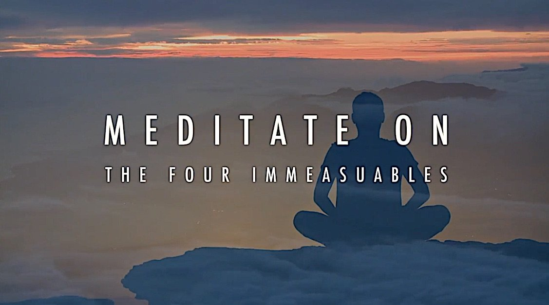 Buddha Weekly Meditate on The Four Immeasurables Buddhism
