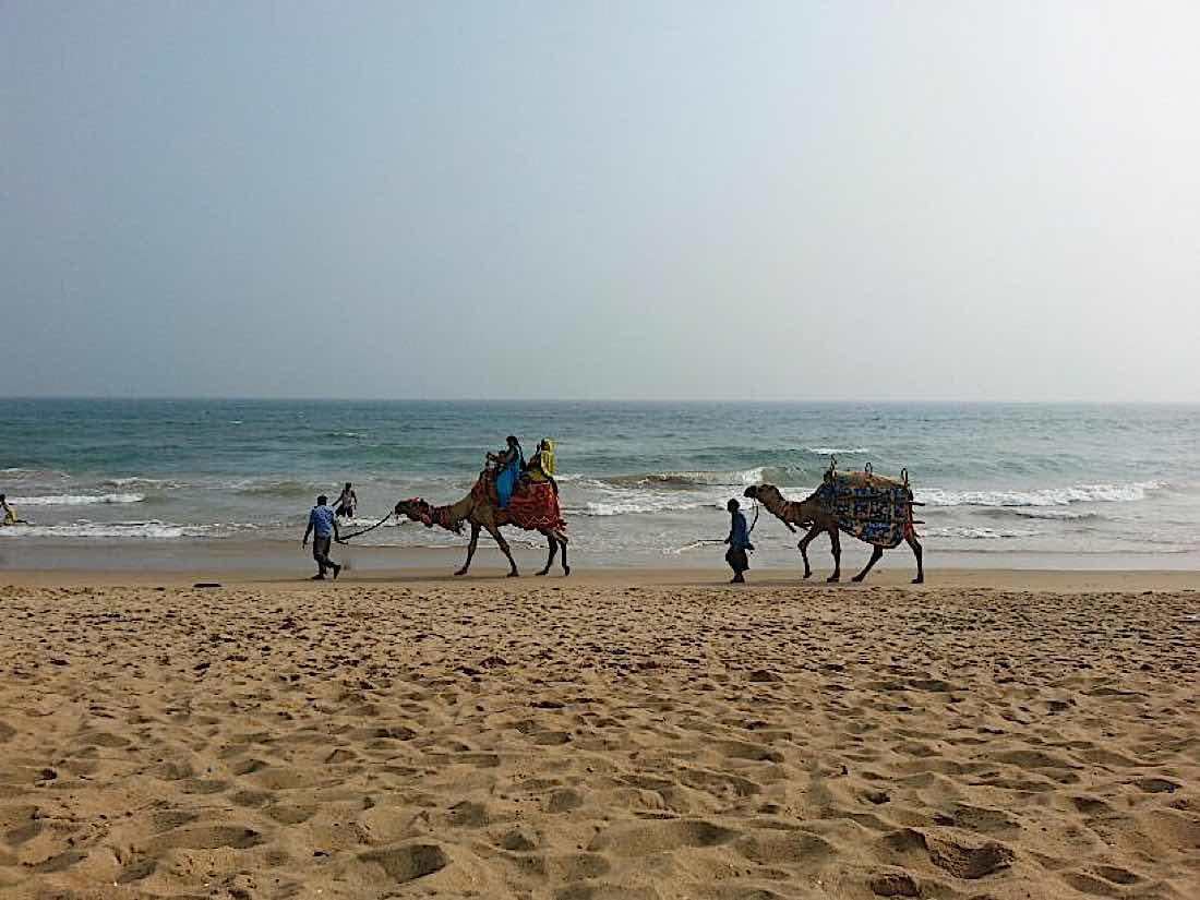 Buddha Weekly Meditation on the beach Puri India Buddhism