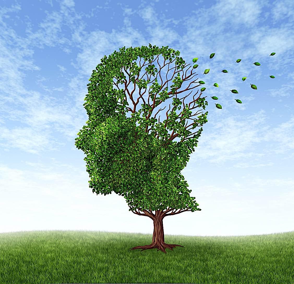 Buddha Weekly Memory loss dementia Buddhism