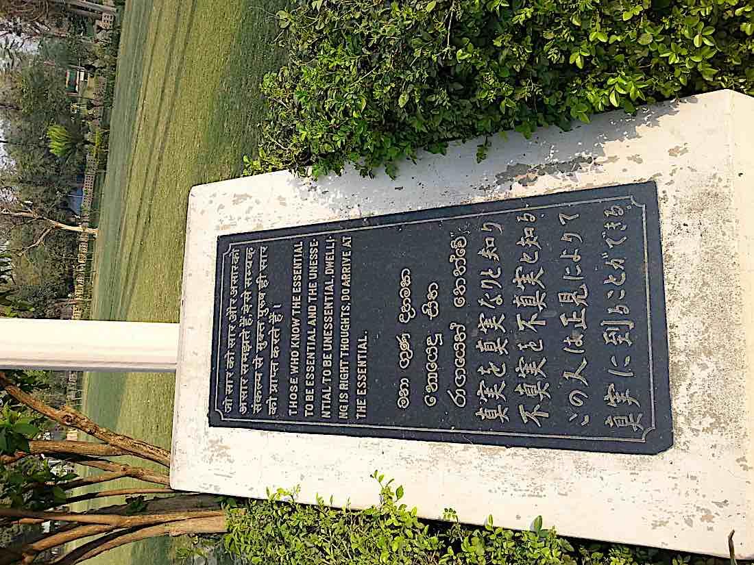 Buddha Weekly Message found in Sarnath India Buddhism
