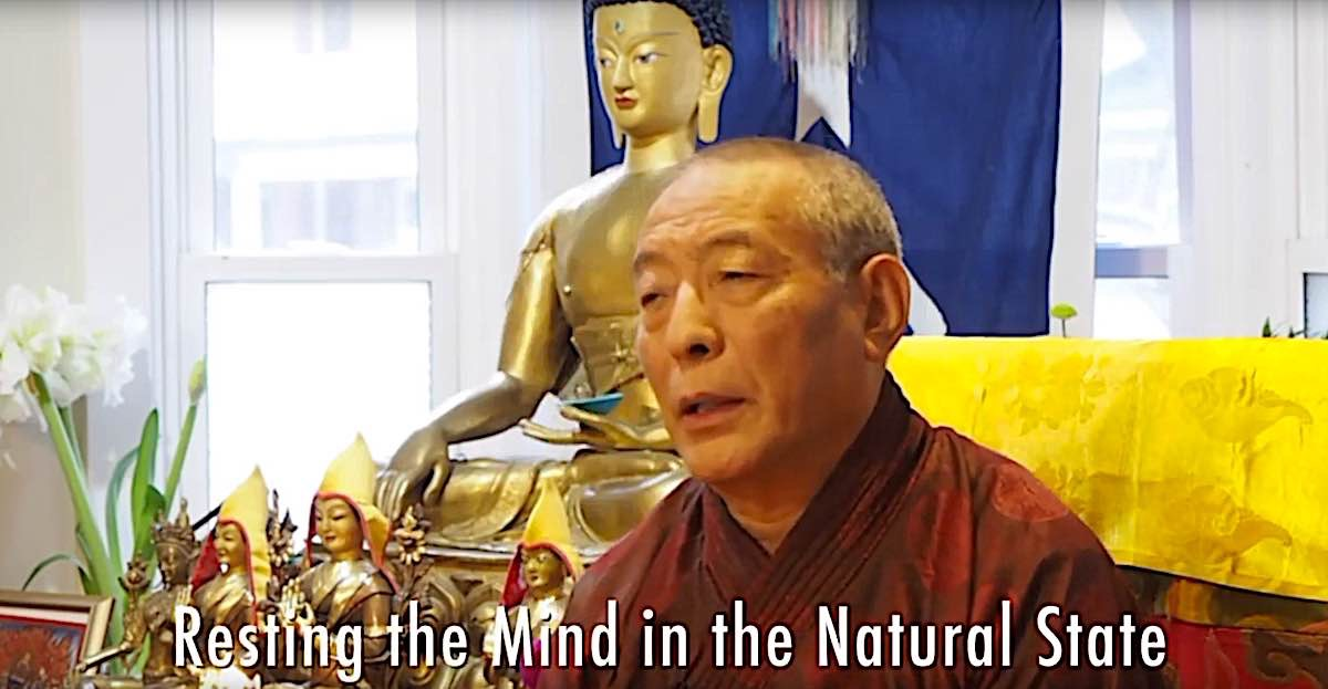 Buddha Weekly Resting the mind in the Natural State Buddhism