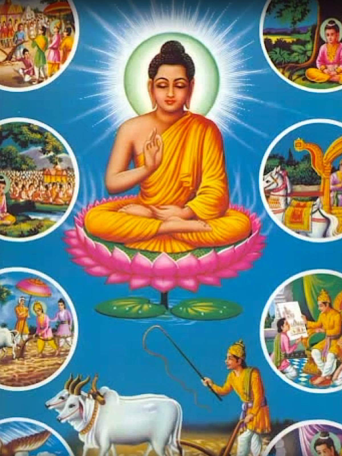 Buddha Weekly Scenes of non violence in Buddhas llife Buddhism