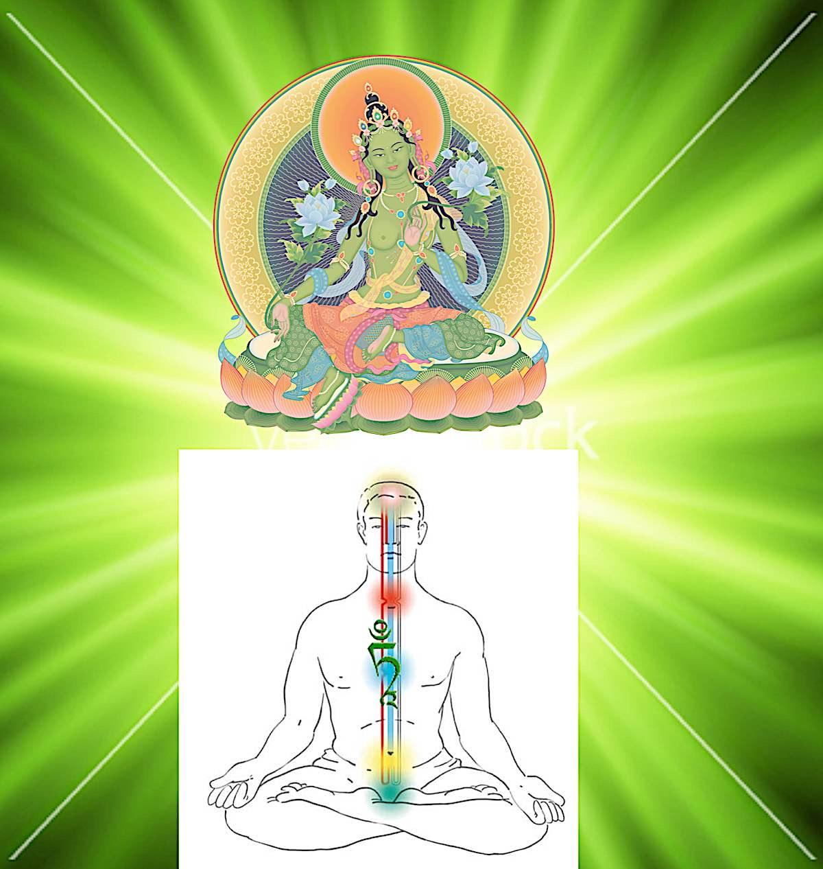 Buddha Weekly Tara Phowa visualization Buddhism
