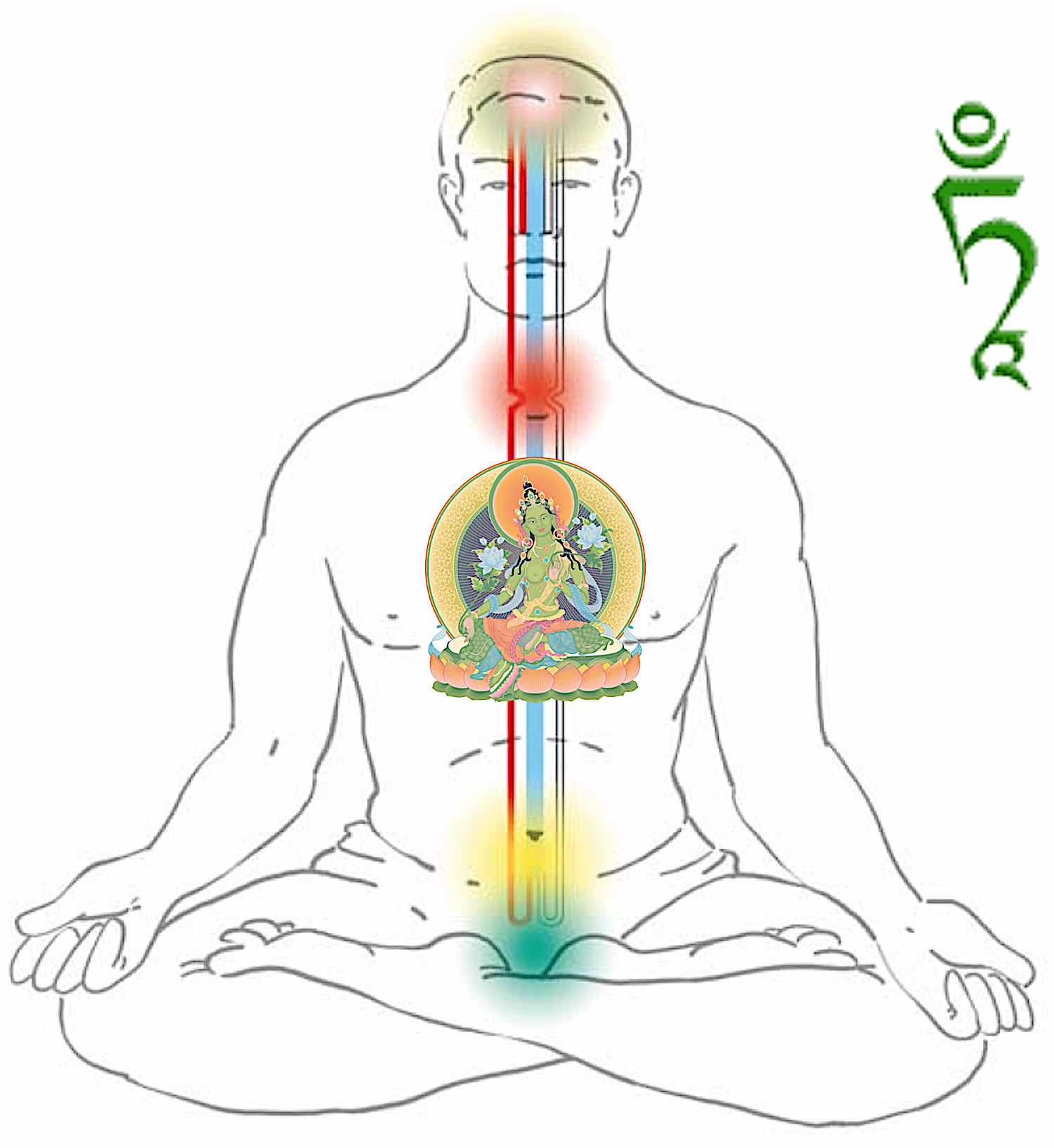 Buddha Weekly Tara at our heart visualized with the channels and chakras Buddhism