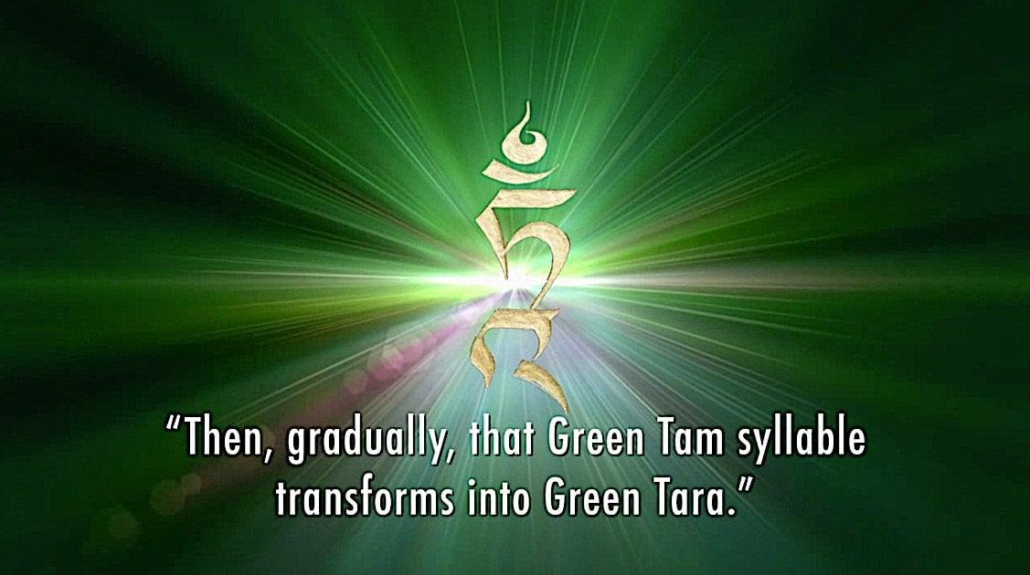 Buddha Weekly Then gradually the Tam syllable transforms into Green Tara Tara meditation Zasep Rinpoche Buddhism