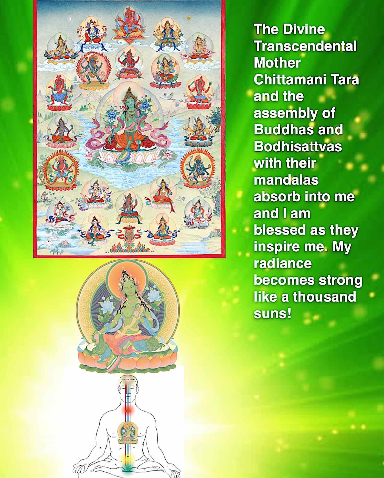 Buddha Weekly Visualization of Tara in text for Ipad Buddhism