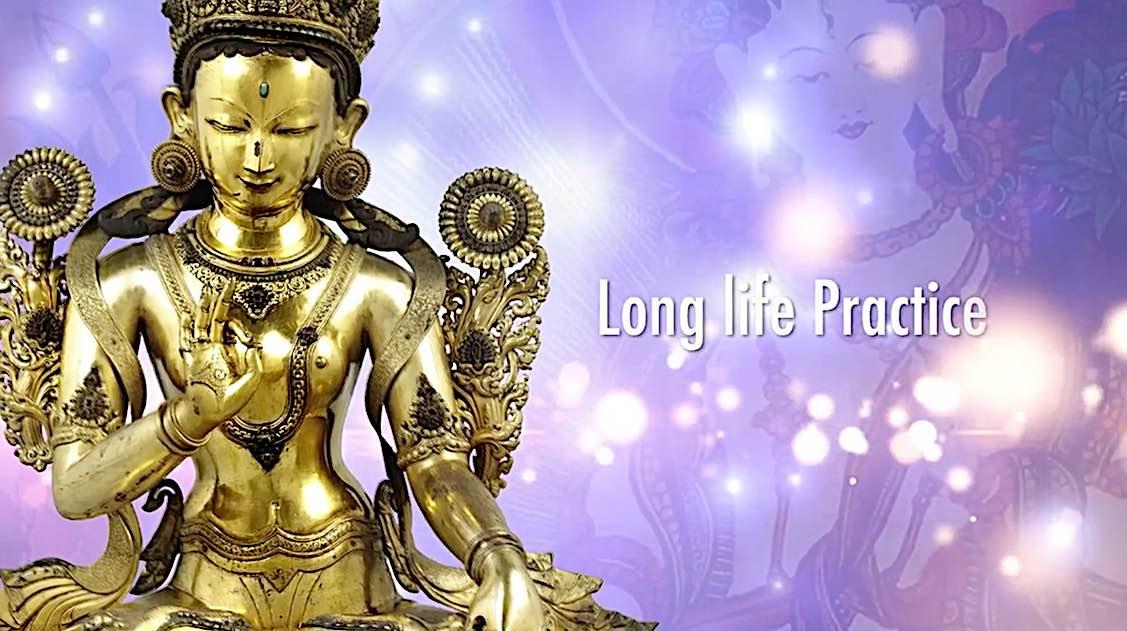 Buddha Weekly White Tara Long Life Practice video guided meditation H E Zasep Rinpoche Buddhism