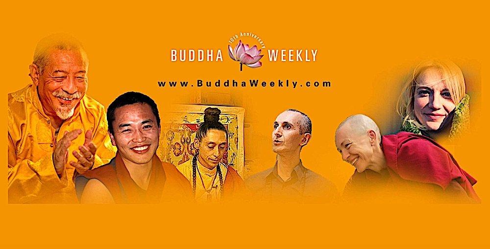 Buddha Weekly YouTube Condo ca Canada Condominium Magazine