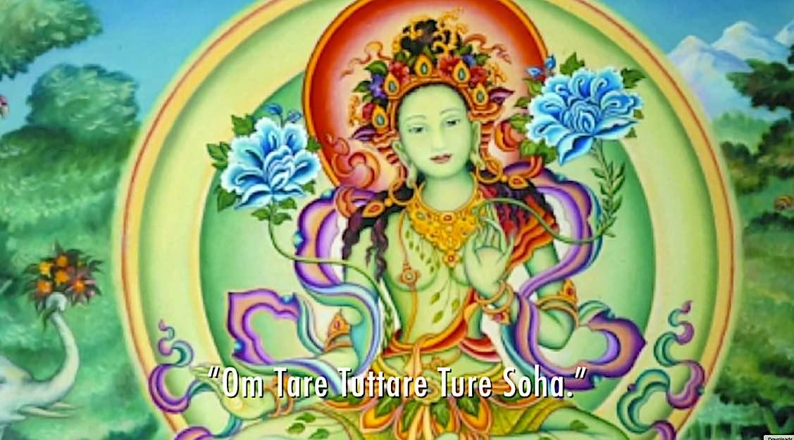Buddha Weekly y OM Tare Tuttare Ture Soha Tara meditation Zasep Rinpoche Buddhism