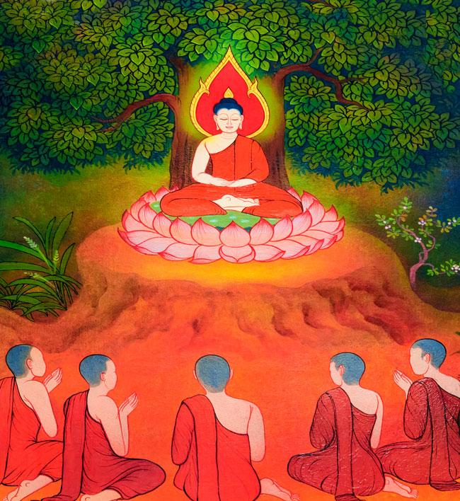 Buddha tree 31489906