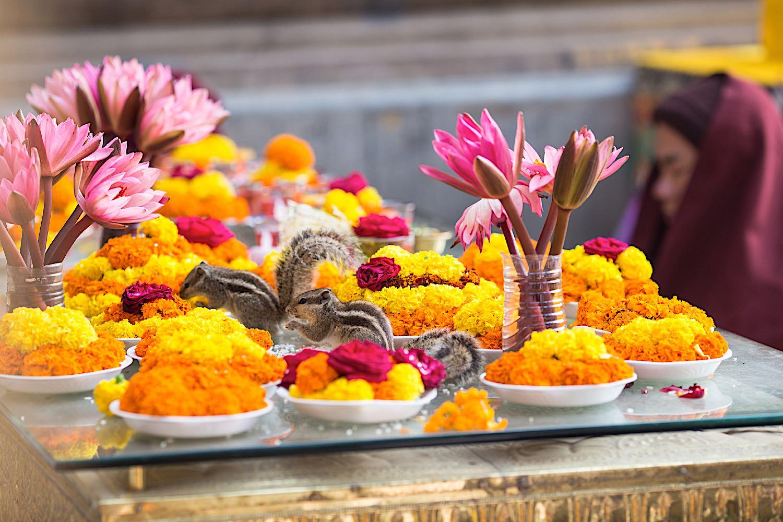 BuddhaWeekly offerings 69205245 1500 3