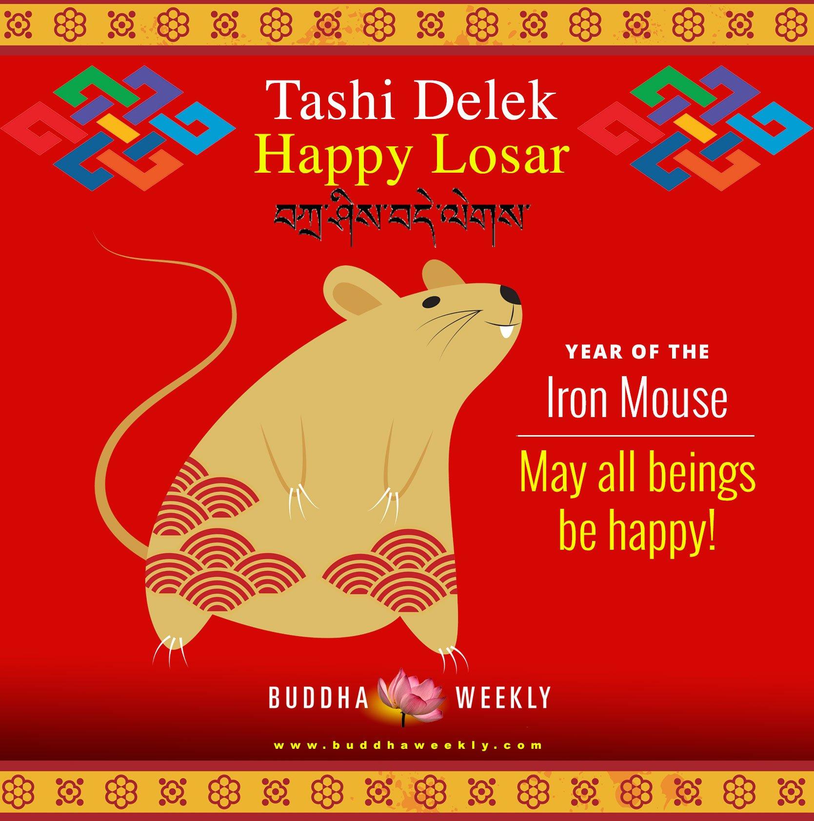 Losar mouse 2020