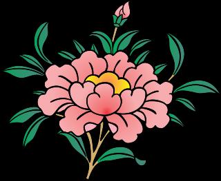 Lotus Flower Symbol Buddhism