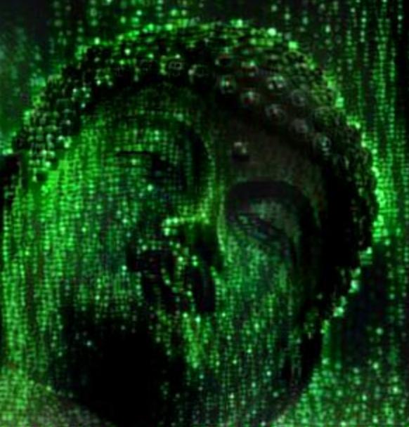 Matrix Buddha