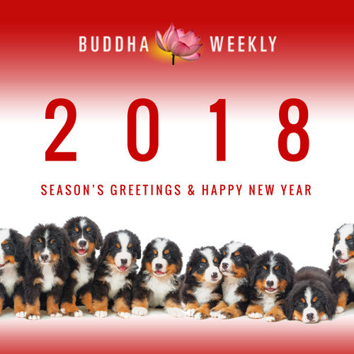 "Happy 2018. Most of 2018 is the ""year of the Dog"" — since it's Lunar calendar, starting February rather than January."