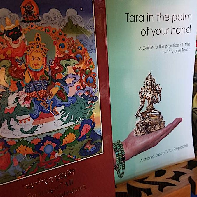"""Two books by Zasep Tulku Rinpoche focused on """"protection"""" in Buddhism. Tara in the Palm of Your Hand is a detailed practice guide to the saviour Buddha Tara and her 21 manifestations according to Surya Gupta. The highly specialized Source of All Protectors covers advanced permission-based practices of 16 Tibetan Buddhist protectors."""