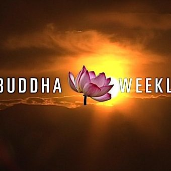 Buddha-Weekly-Buddha Weekly New Video Series Trailer What the Teachers Say-Buddhism