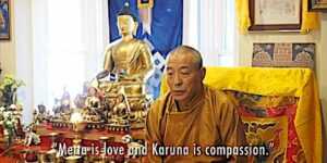 Buddha Weekly Feature image Metta and Karuna Love and Compassion teaching video with Zasep Tulku Rinpoche Buddhism custom crop