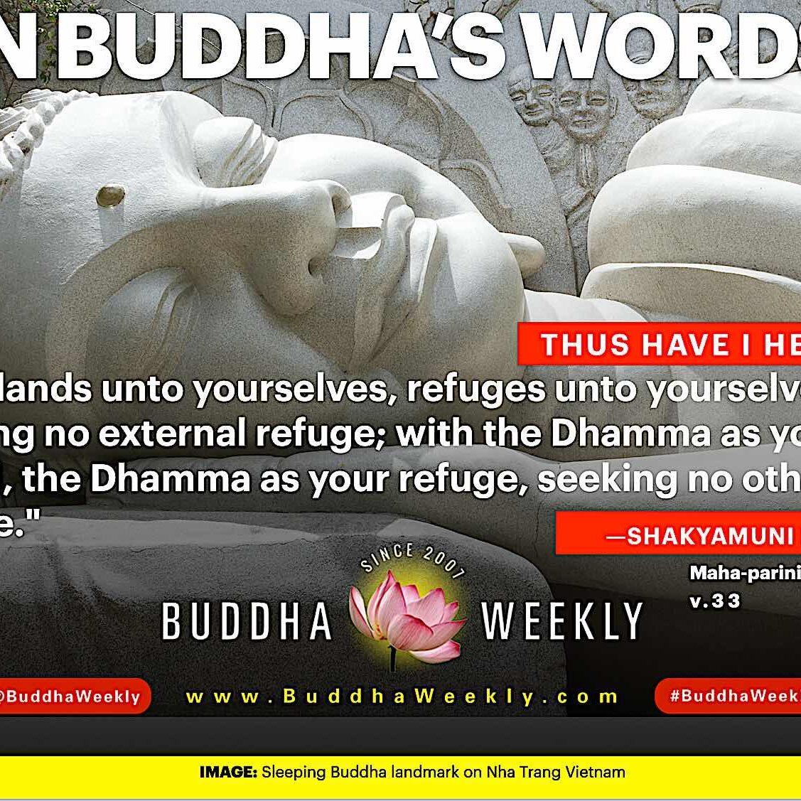 "In Buddha's Words 2: ""Be islands unto yourselves, refuges unto yourselves, seeking no external refuge; with the Dhamma as your island, the Dhamma as your refuge, seeking no other refuge."" Cited from Maha-parinibbana Sutta v.33"