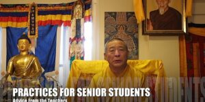 Buddha Weekly Practices for Senior Students Zasep Rinpoche Advice Video 9 Buddhism custom crop